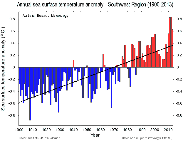 Annual SST anomaly SWAus