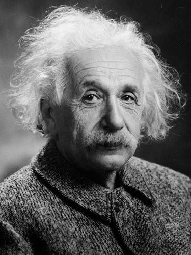 The internet informs me that Albert Einstein was a scientist.
