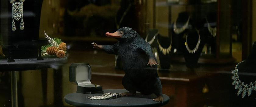 The pesky Niffler is one of the comedic highlights of the film.